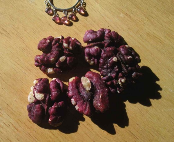 Livermore red walnuts grown here in California are a striking shade of magenta, as well as being delicious.